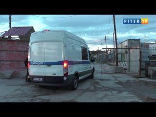 На юге Петербурга полицейские провели миграционный профилактический рейд