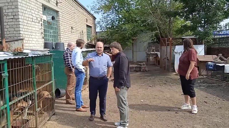 Видео от Олега Струкова