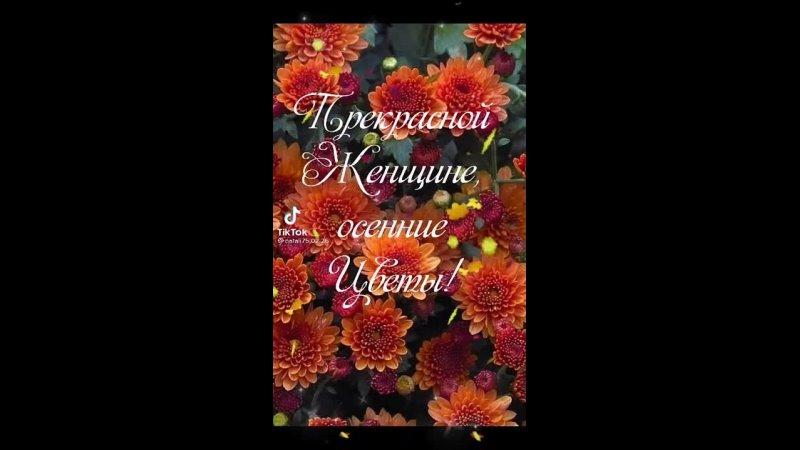 Видео от Анжелики Максимченко