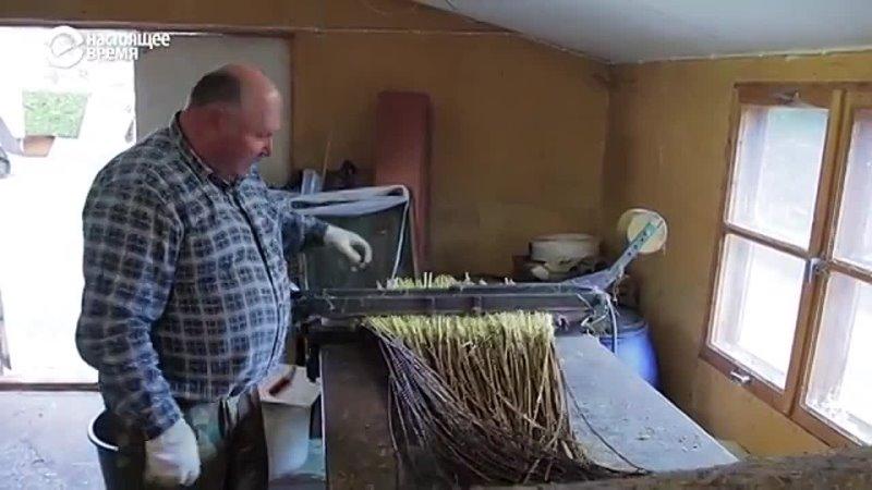 Искусство плетения корзин от отца к сыну БАЛТИЯ