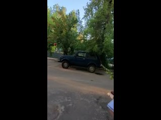 Video by Yana Efremova