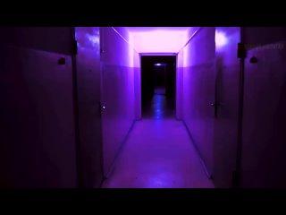 [Звездный Капитан] Ужасы Вилли Вонки и его Шоколадной Фабрики