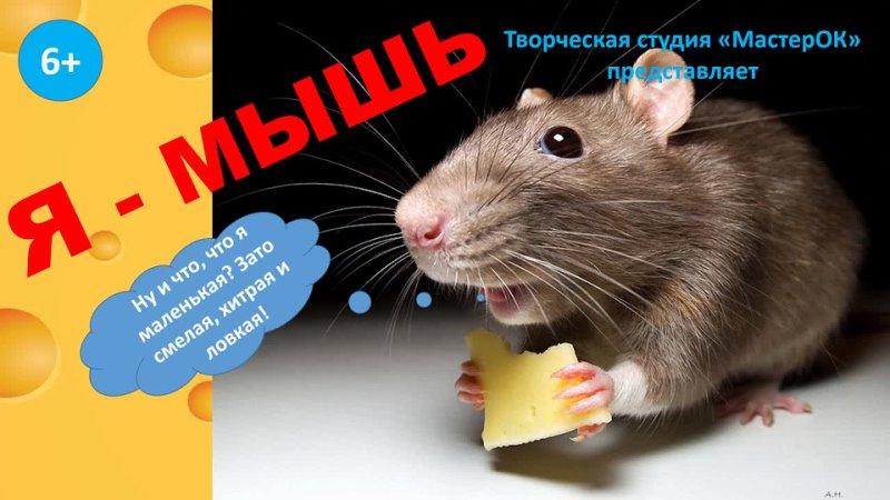 Видео от Детская библиотека г Красноуфимск