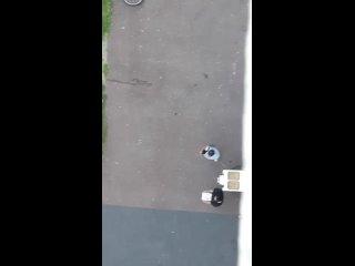 Pascale Pettontan video