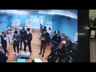 Москвич выпустил енота на одном из избирательных у...
