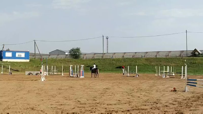 Видео от ПКФ Полочаны Верхом на лошади