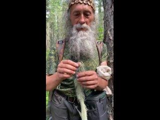 """Видео от Эко-магазин """"Русские травы""""   Иван-чай   Мед"""
