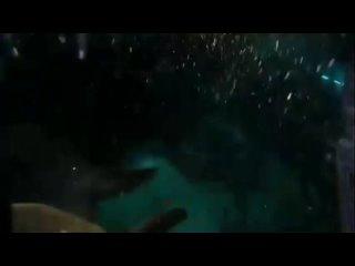 Video by Сити-парк «Град» • Воронеж