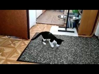 Видео от Олега Васильева