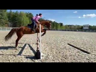 Video by Tatyana Zvonkaya