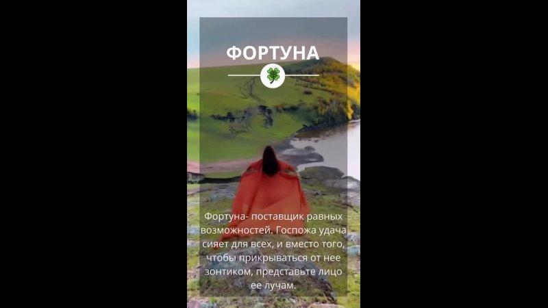 Видео от Светланы Рыбиной