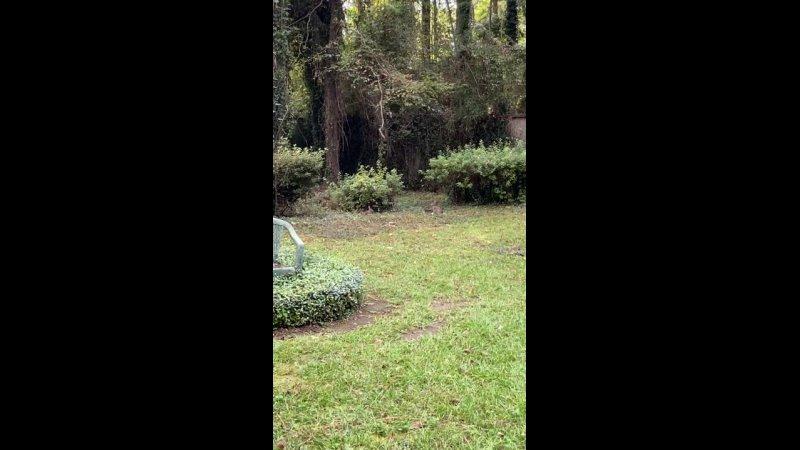 Видео от Blakely Owens