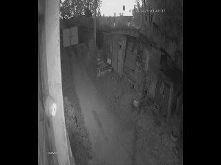 Видео от Виктора Клинского