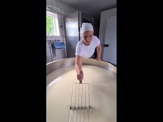 Нарезка будущего сыра