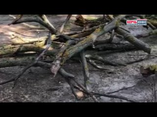 Керчь ИНФО kullanıcısından video