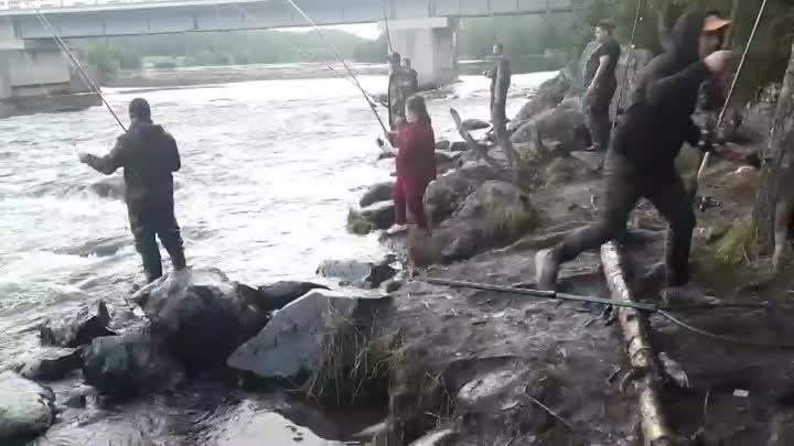 Видео от Рыбалка в Мурманске и обл.(фото и видео) LIVE