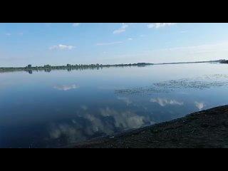 Video by Alia Kaiumova