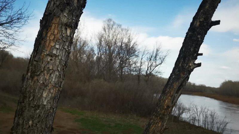 финка 5 1