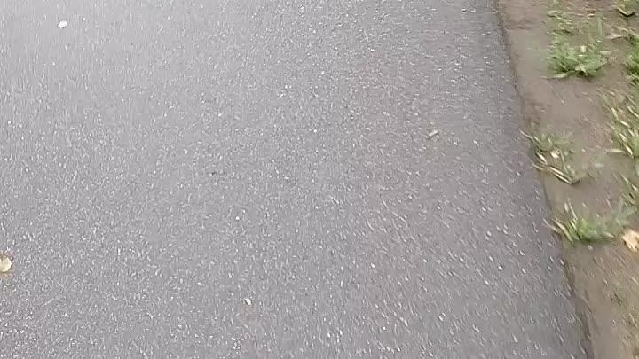 В Павловске на Садовой улице у Привокзального сквера Лэнд Ровер вылетел на встречку. Пострадало 7 ма...