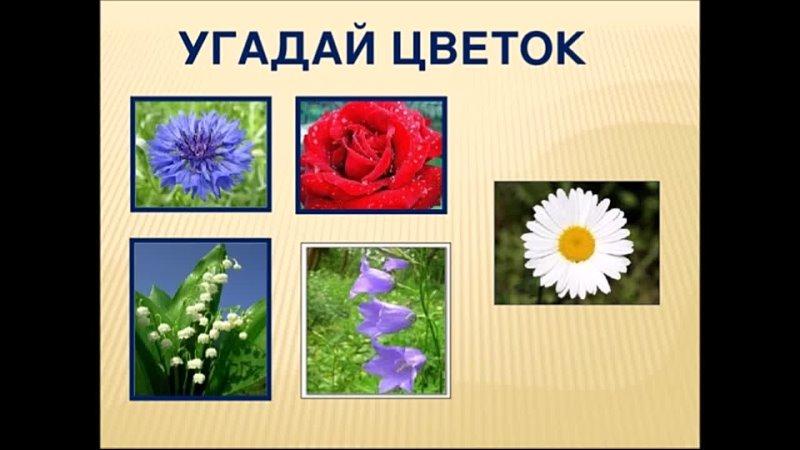 Видео от Коломыцевский СДК