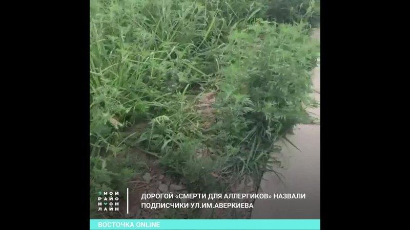 Видео от Восточка Online Краснодар Мой район