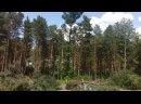 Видео от Город и горожане. Железногорск,Красноярский кр.