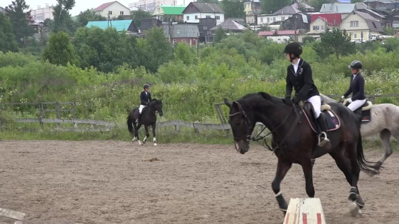 Кубок Томской области по конному спорту Репортаж SportUs Рro из клуба Баланс