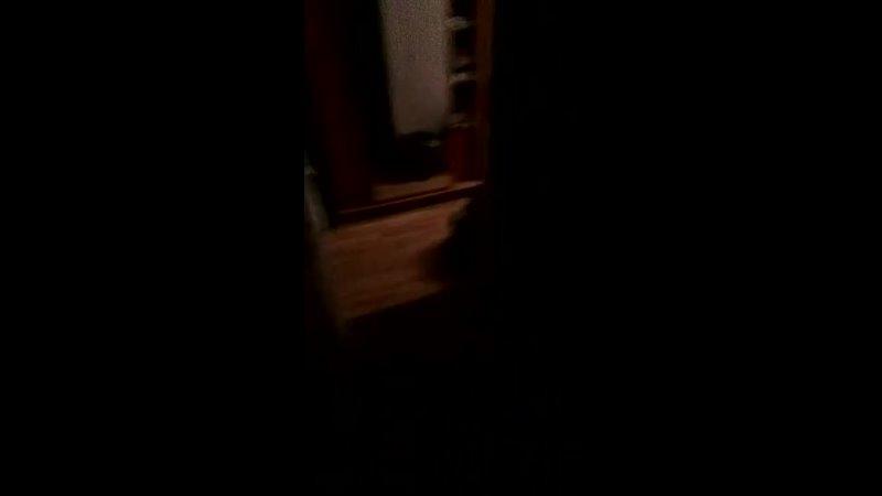 Видео от ВЕСТНИК ШНЕЕРСОНА