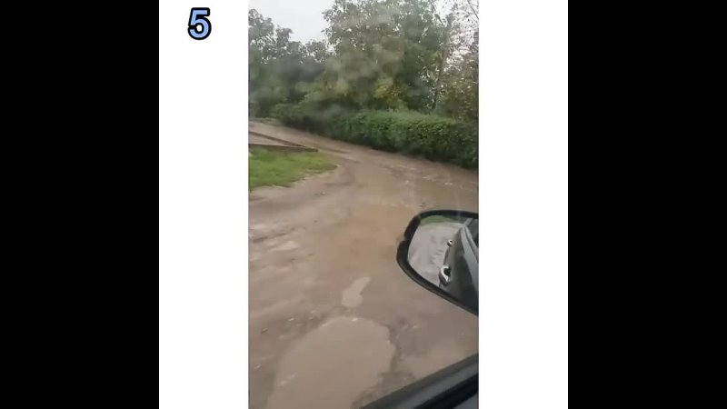 Обращения от подписчиков ✅ 1️⃣ Куда обращаться сухое дерево с огромными сухими ветками стоит на тротуаре по адресу Ессентуки Л