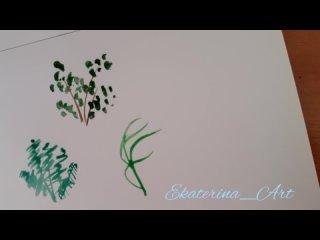 Растения и травы