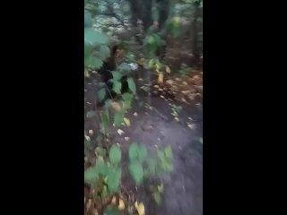 Видео от Домники Критской