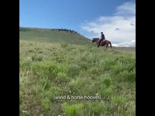 Giddy up!.mp4