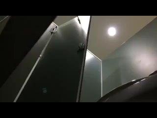 Untitled — Video