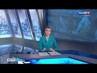 Во_Владимире_разводят_иранских_выставочных_голубей.mp4