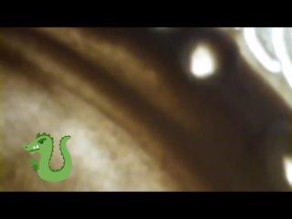 Видео от Студия рисования песком SandLand (Челябинск)
