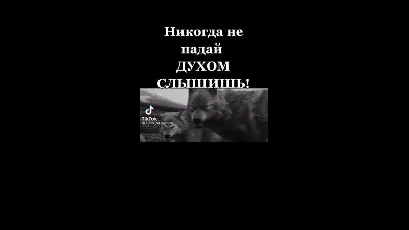 Видео от Евгения Шматко Шабаева