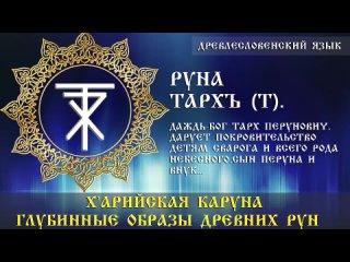 Руна Тархъ | х'Арийская Каруна | глубинные образы древних рун