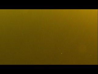 Видео от Андрея Платонова