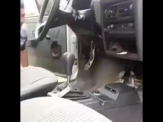 Очень неожиданный гость в машине jxtym ytj;blfyysq ujcnm d vfibyt