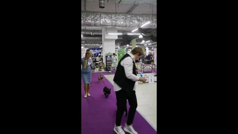 Видео от Оксаны Утешевой