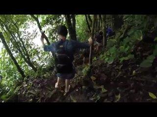 Вулкан Ареналь. ОПАСНЫЕ джунгли и НАШ ПЕРВЫЙ ЛЕНИВЕЦ! Коста Рика #8