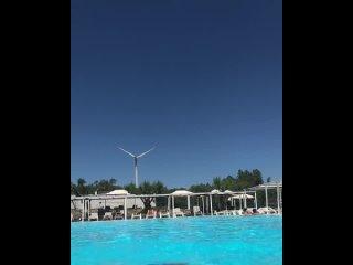 Video by Robert Hite