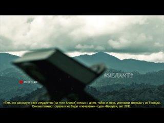 Видео от Мухаммада Джабраилова