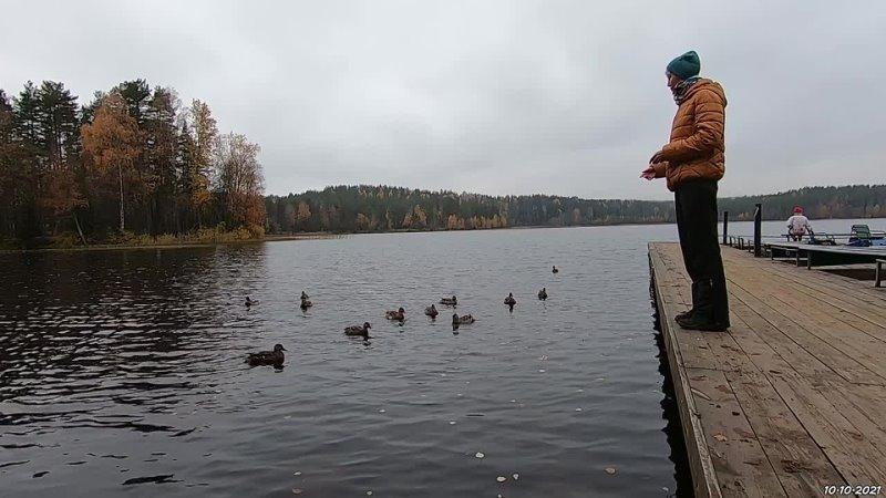 INSLED Норвежский парк в Орехово
