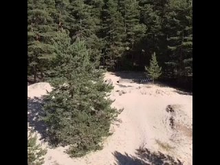 Видео от Сосновый Бор
