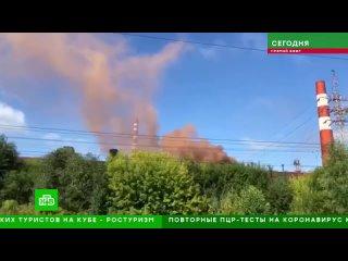 Видео от ЗЕЛЕНЫЕ САНКТ-ПЕТЕРБУРГ | Экология
