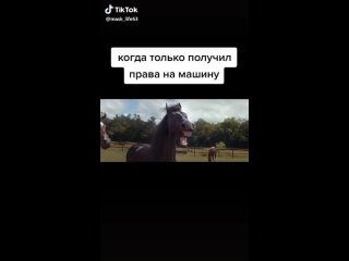 Видео от МБ Автомагазин Апатиты (480p).mp4