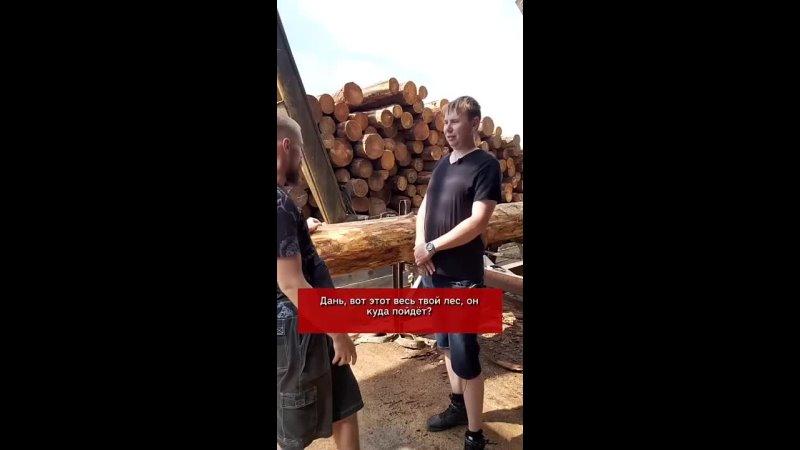 Просто о том куда уходит руский лес и почему нам достаются опилки с ядом формальдегидом пропитанные