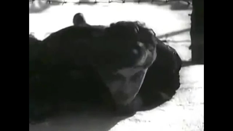 Видео от Михаил Кузнецов Советские актеры