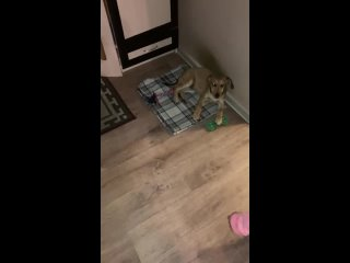 Видео от Лены Ивы